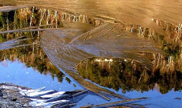 Ice 01 200504 Whtfc Toll Reflection