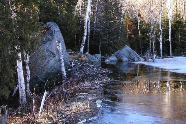 Ice 02 200504 Whtfc Toll Beaver Dam