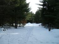 20130326-Snow-Paths-01