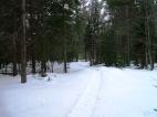 20130326-Snow-Paths-05