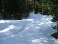 20130326-Snow-Paths-09