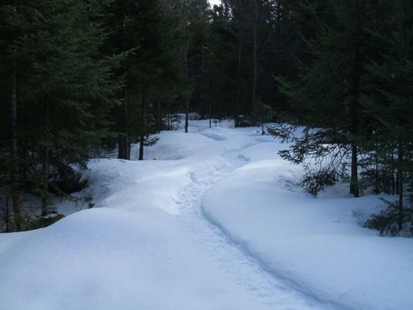 20130326-Snow-Paths-10
