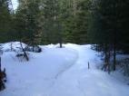 20130326-Snow-Paths-11