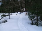 20130326-Snow-Paths-13
