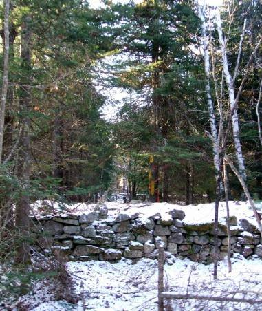 phss6-05-20061208 Rock Wall 2c
