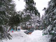 phss6-15-20071221 Balsamea Snow Scenes 2