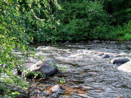River1_SRPUA_20130804