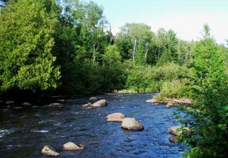 River2_SRPUA_20130804