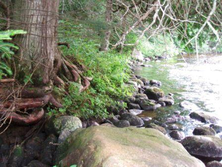 River3_SRPUA_20130808