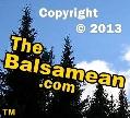 Copyright © 2013 TheBalsamean.com ™ 119x108px