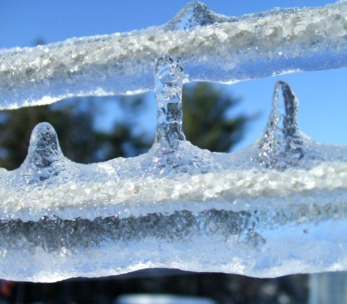 Roof Icicles 20121224l line