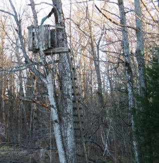 c09-CHWF-14E06-Smith-Rd-Treestand-1-500px