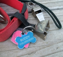 buddy-collar-bell-tags-whistle-2-15h23-300px