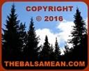 Copyright © 2016 TheBalsamean.com