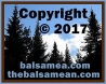 Copyright 2017 TheBalsamean.com. All rights reserved.