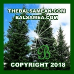 Copyright 2018 The Balsamean