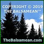 Copyright 2019 TheBalsamean.com
