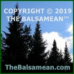Copyright © 2019 The Balsamean™