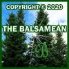 Copyright 2020 TheBalsamean.com