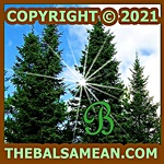 Copyright 2021 TheBalsamean 150px